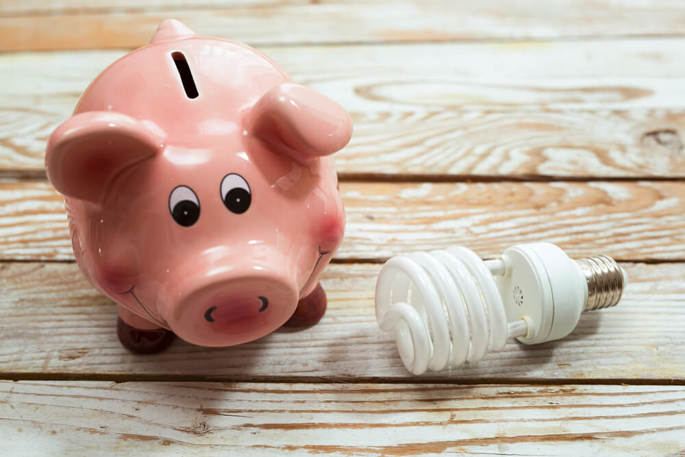 piggy bank next to a light bulb symbolizing the Smart Power program using clean energy to save money