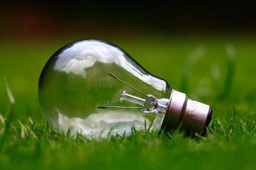 A light bulb lying in the grass representing the thought leadership category