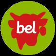 Bel Group Logo official colors