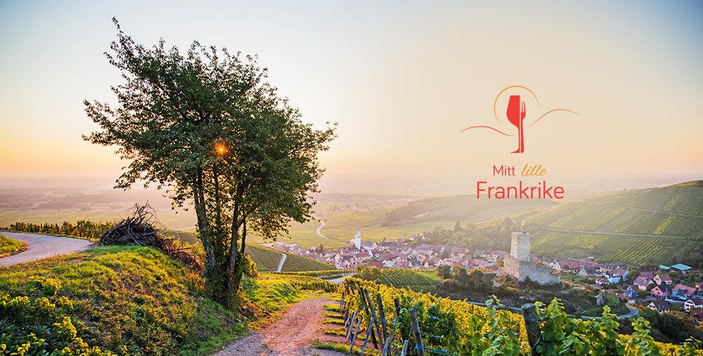 Webdesign og profil for Mitt lille Frankrike
