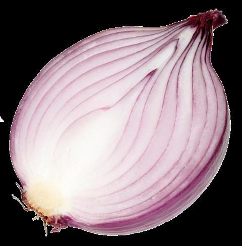 inside onions