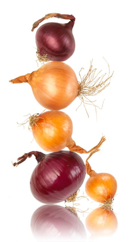 Red and Brown onions