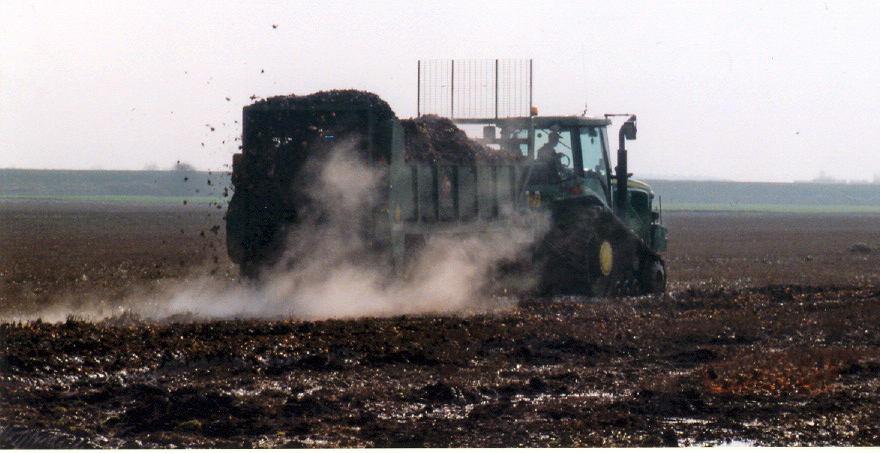 veg waste