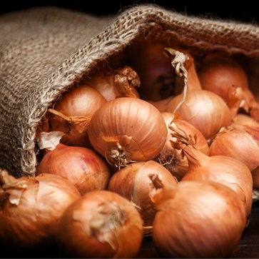 a sack of shallots