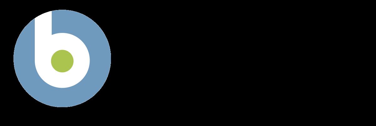 IBM BigFix Endpoint Management Logo