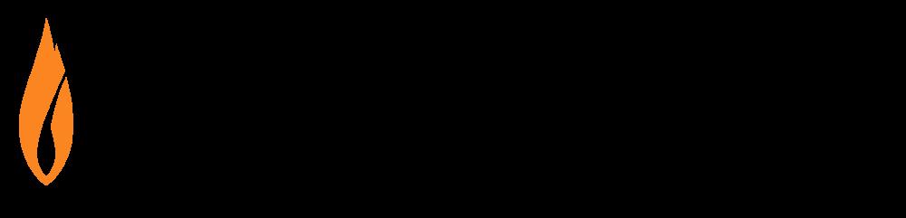 Flashpoint-Intel logo