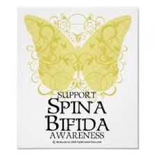 Spina Bifida Association of Tasmania