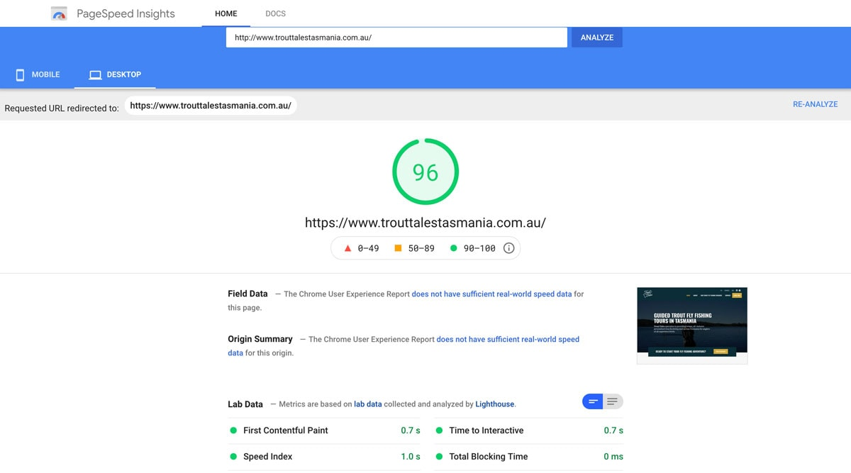 google page speed insights page showing 96 percent