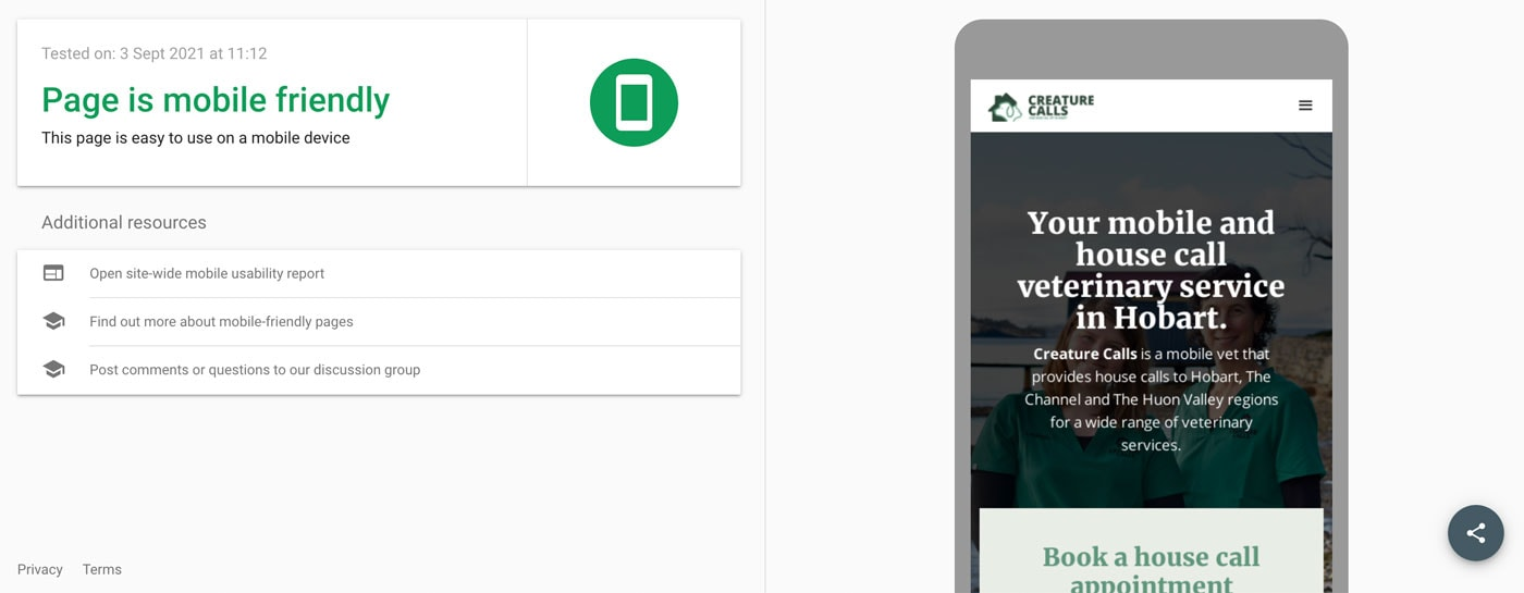 image of phone and green text showing pass of mobile friendly test