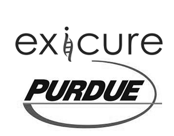 Exicure Logo and Purdue Pharma L.P. Logo