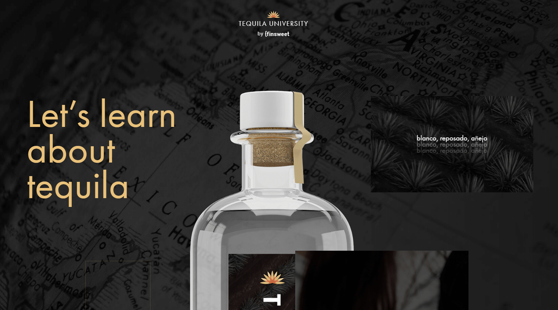 tequila project developed by evekayser webflow expert