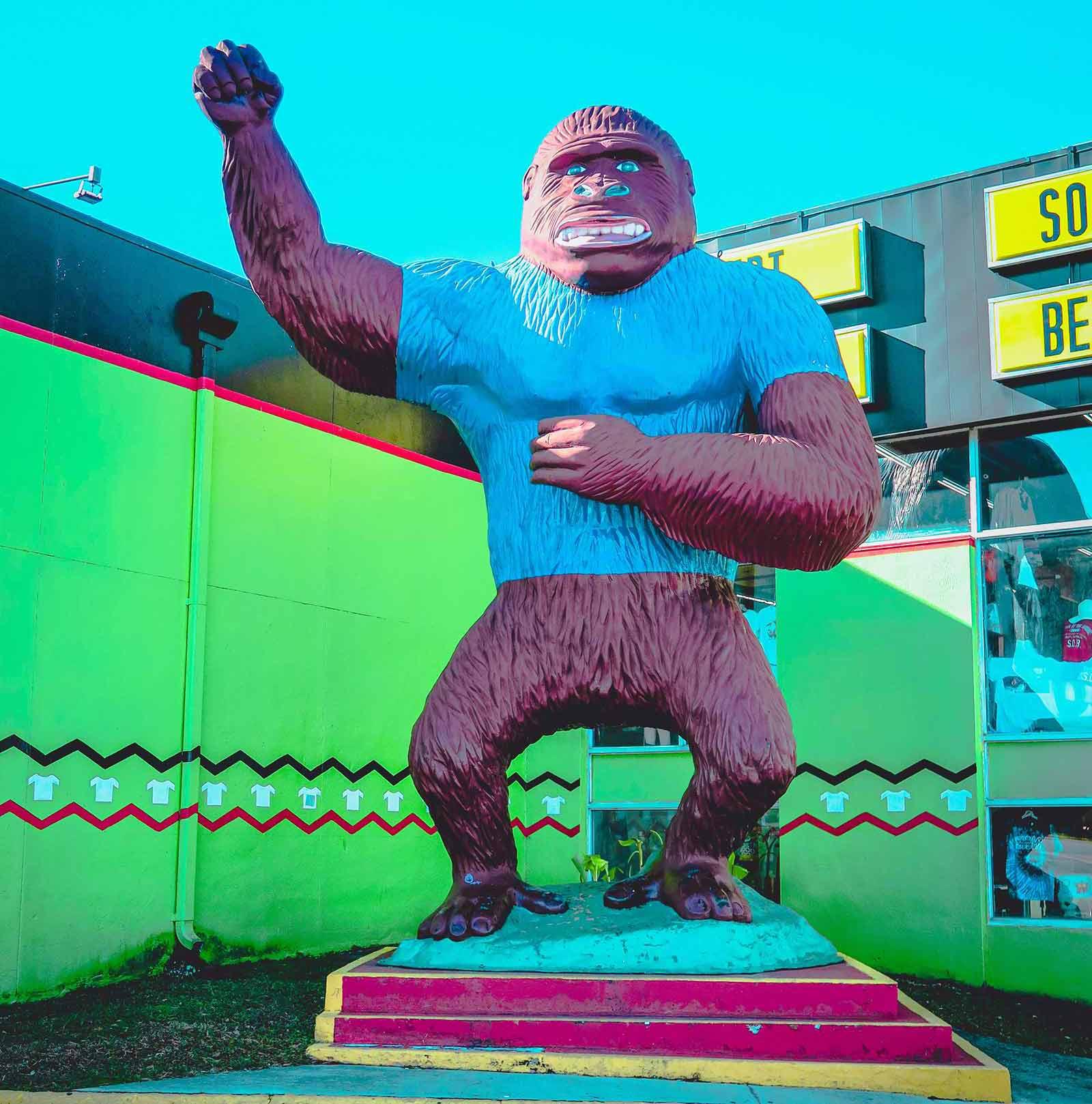 Bild: Ein bunter Affe auf einem Podest in Siegesposition