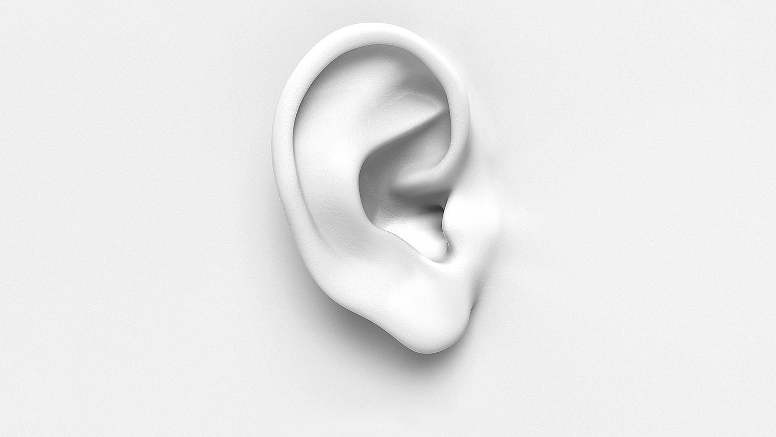 Bild Ohr: Gutes Design enthält die Gedanken guter Worte