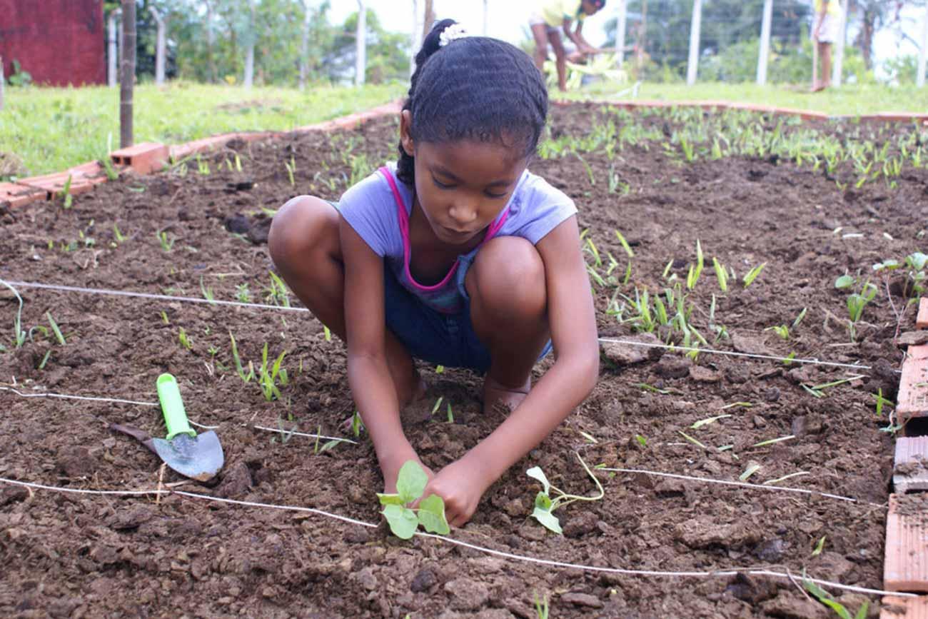 Bild –Ein Mädchen, dass im Beet eine Pflanze pflanzt.