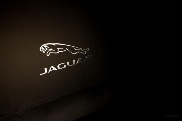 Jaguar Paper Bag
