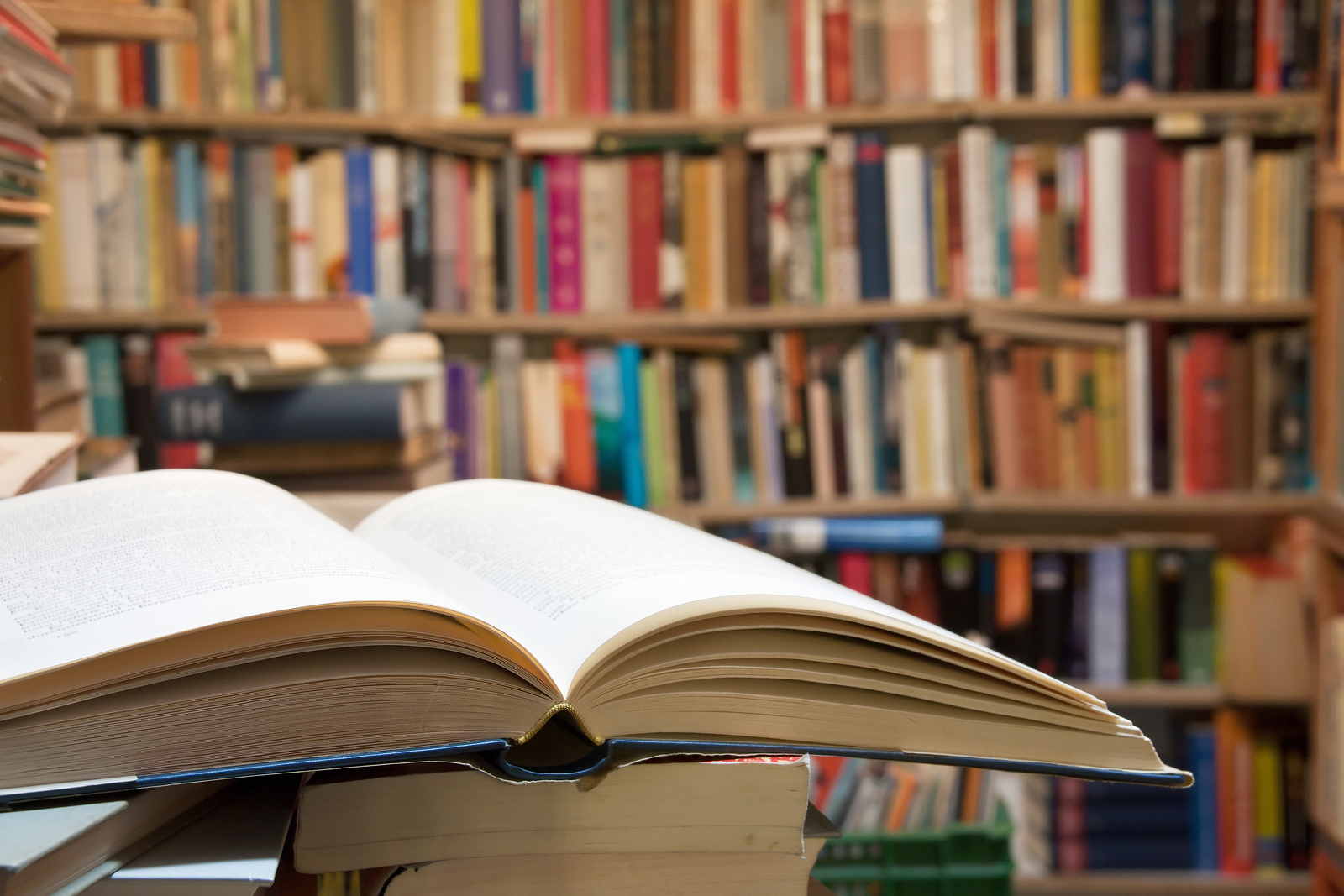 Soak up the literature at the Wigtown Book Festival in the last week of September, in your own guided tour of Scotland