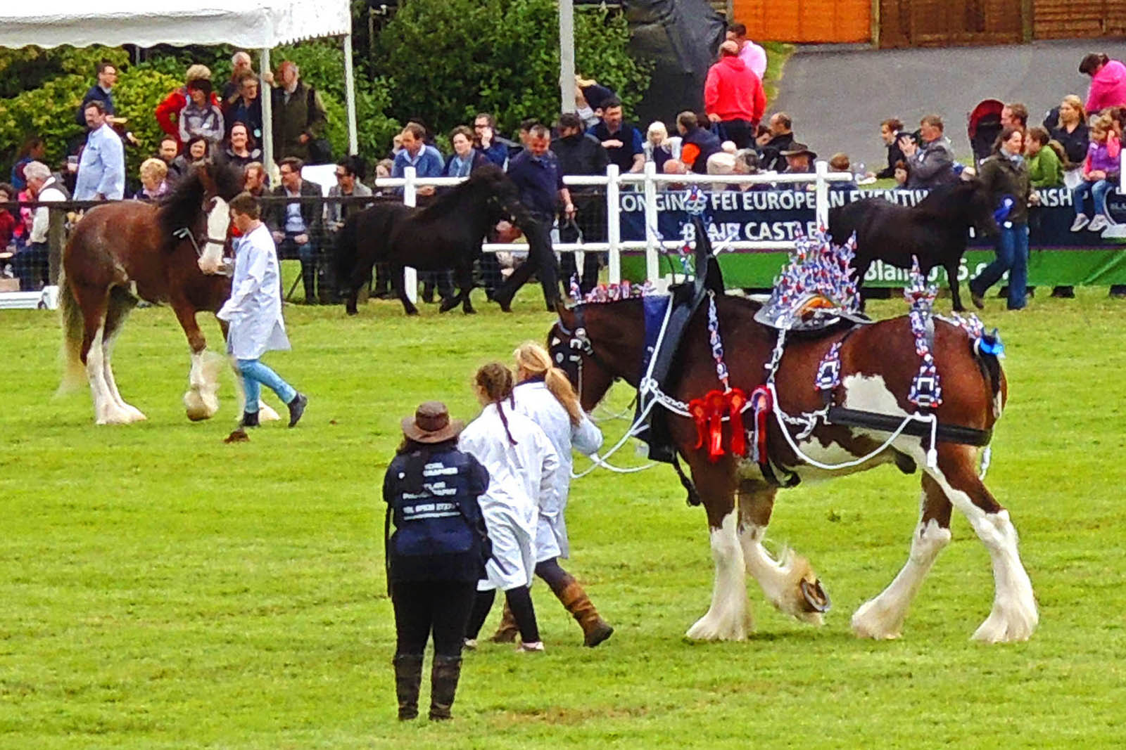 Soak up all things Scottish at the Royal Highland Show. Contact Drumscot for more information