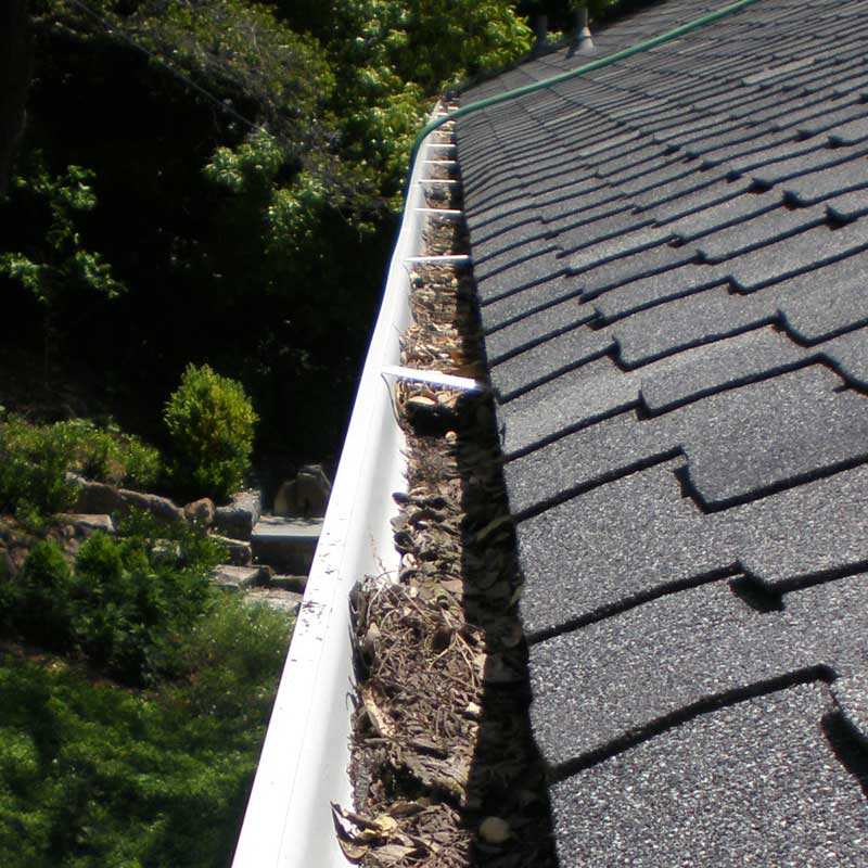 Gutter in Chesterfield needing to be cleaned.