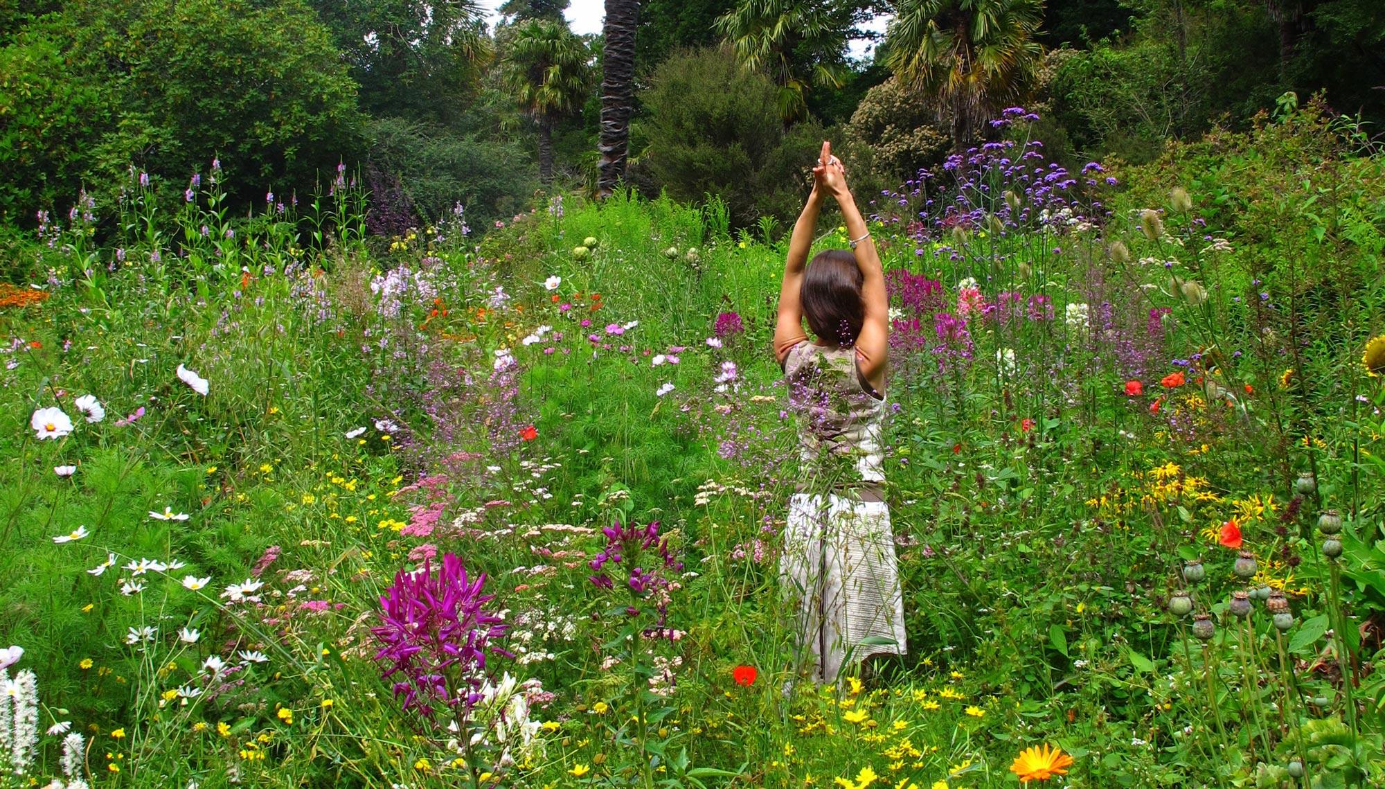 Nature Way - Angie Kinsella
