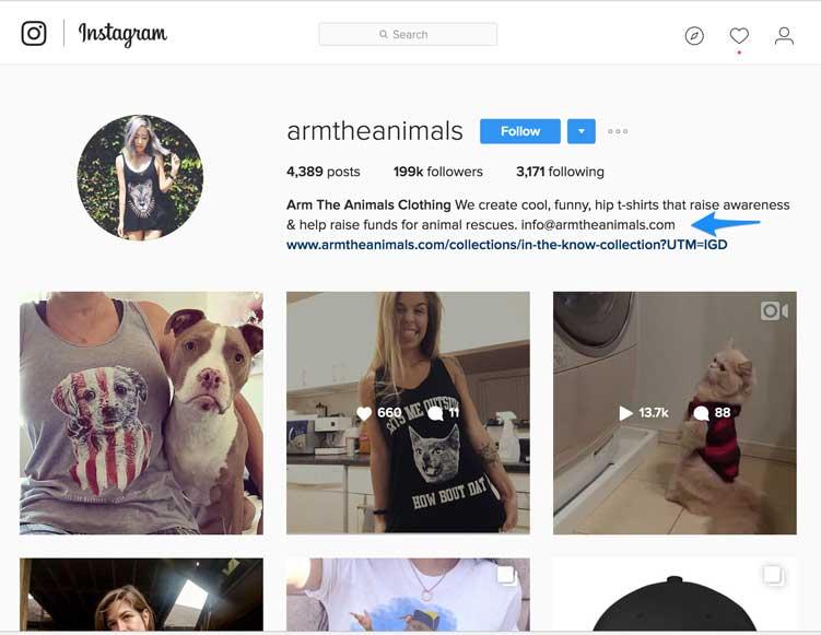 arm the animals instagram page, instagram marketing, animail instagram influencer