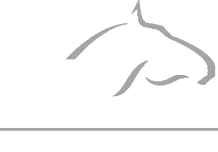 Abbey Veterinary Centres