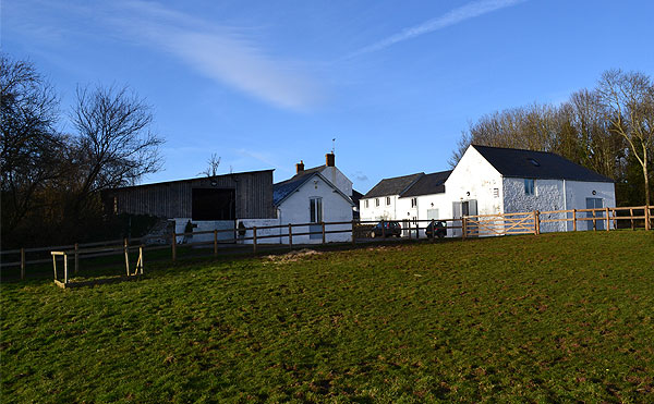 Abbey Equine Facilities