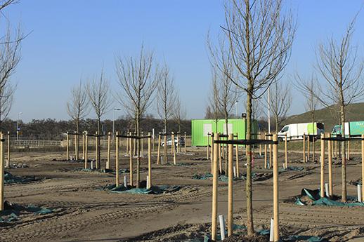 Havengebied Amsterdam omgetoverd in 'bodemlaboratorium'