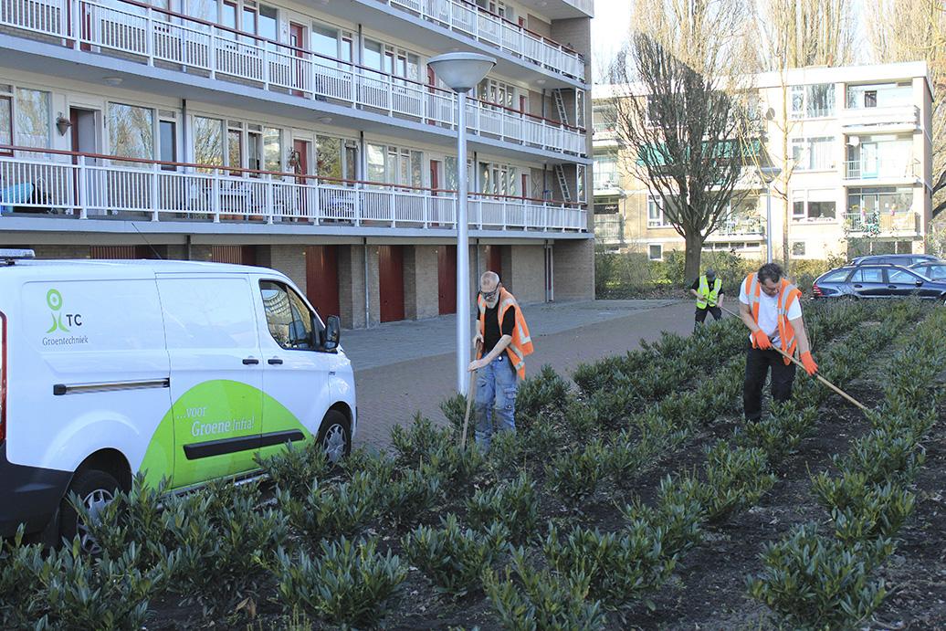 Voorjaar vraagt om onderhoud in Amstelveen