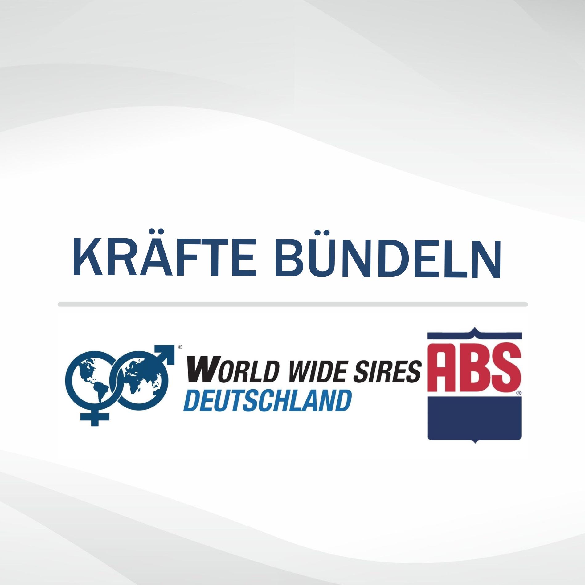 WWS Deutschland und ABS Deutschland bündeln Kräfte