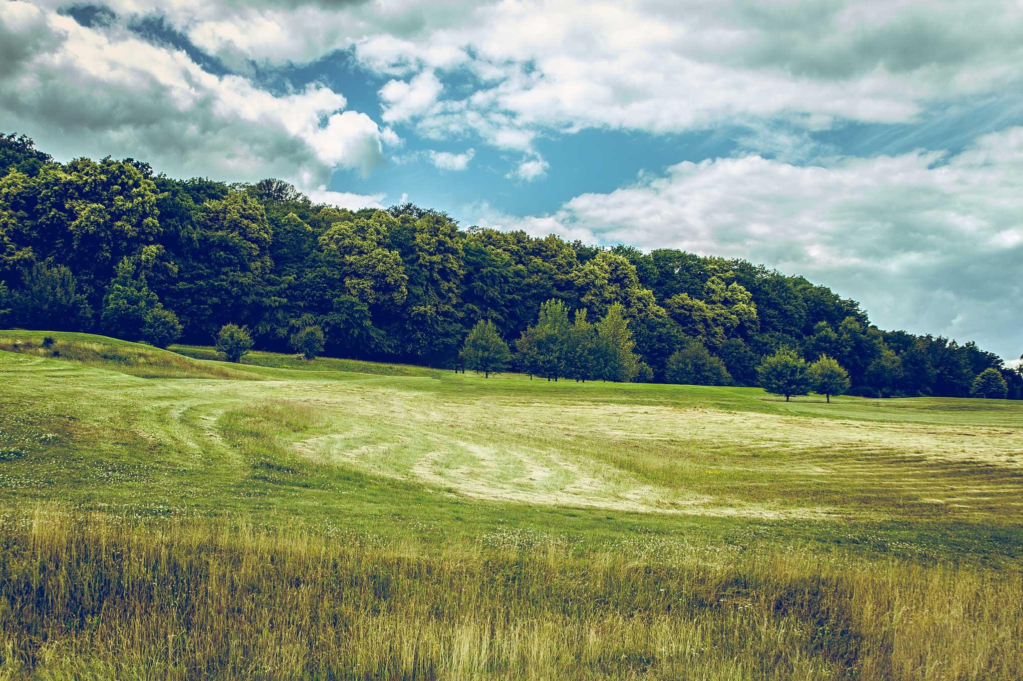 Terrains à vendre dans le Calvados (Caen nord) - SAPI