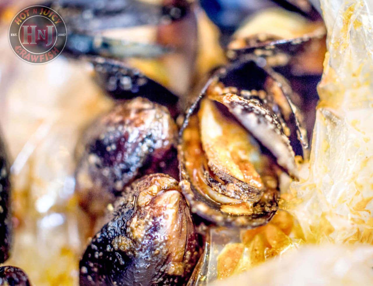 Black Mussels