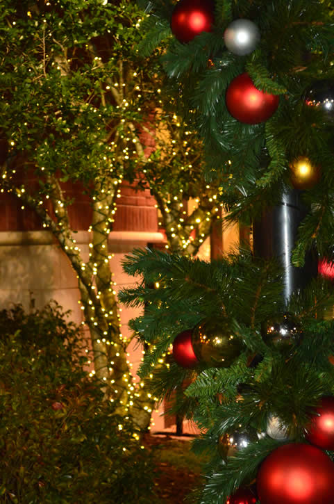 Christmas Decorations for Pavilions in Atlanta