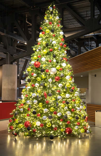 Christmas Tree Lighting and Decorations in Atlanta