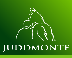 Beaufort Team Chase Supported by Juddmonte
