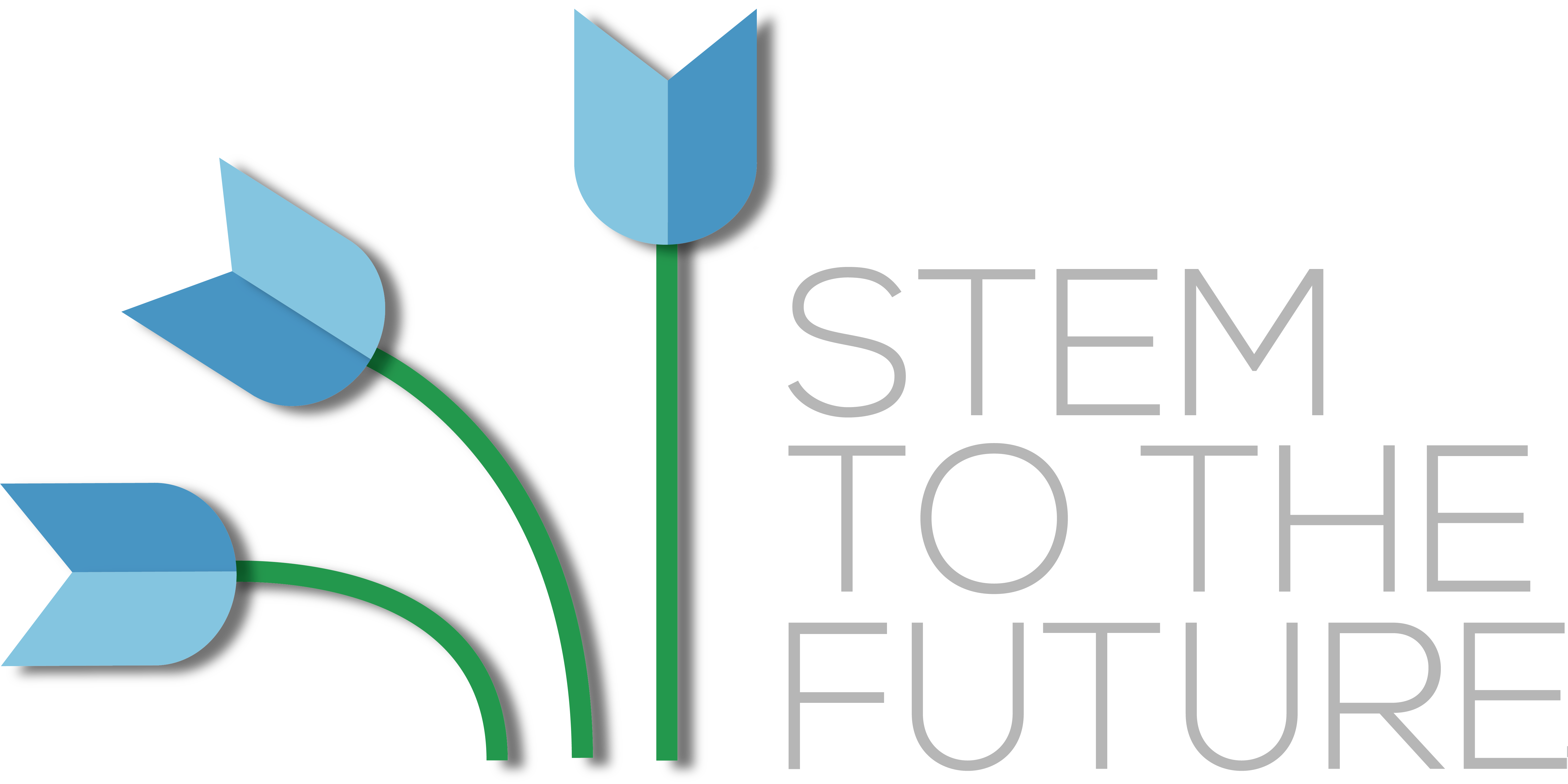 Stem to the Future