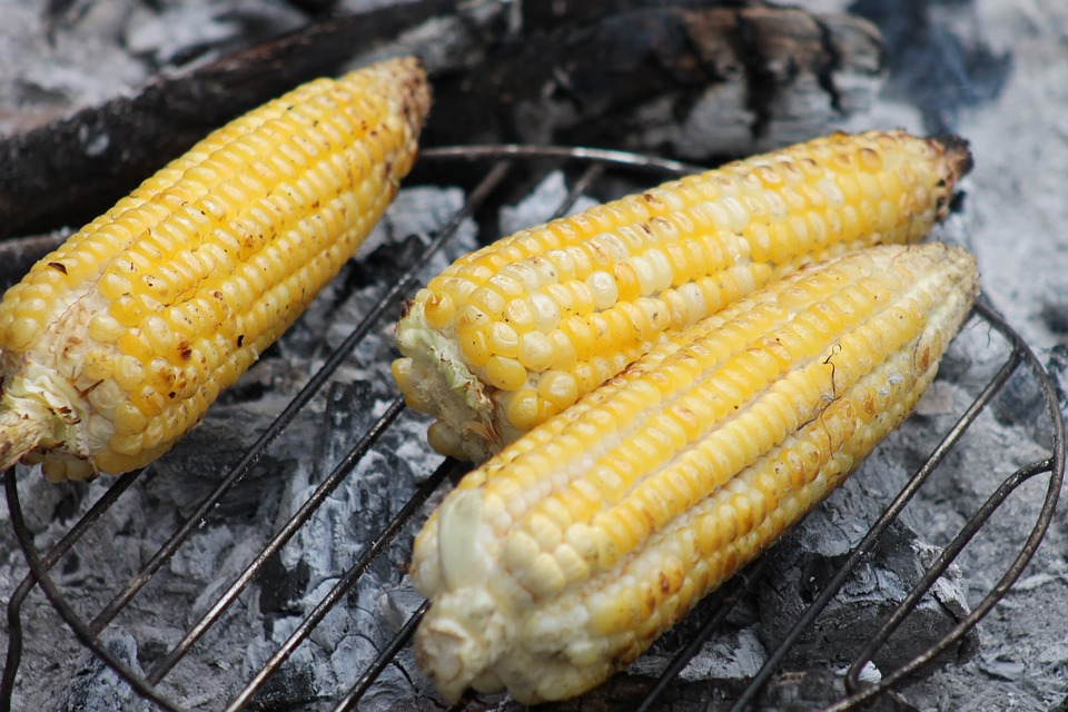 Roasting maize is a delicacy in Ghana
