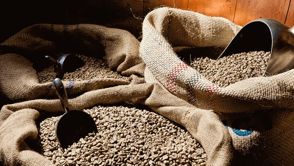 Необжаренное кофейное зерно