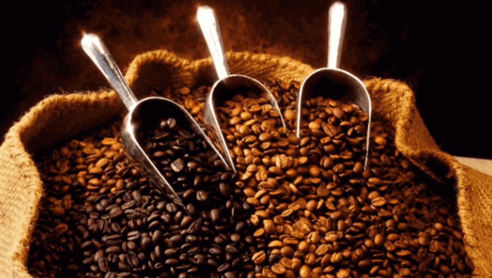 Кофейное зерно разной степени обжарки