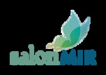 Salon Mir Icon