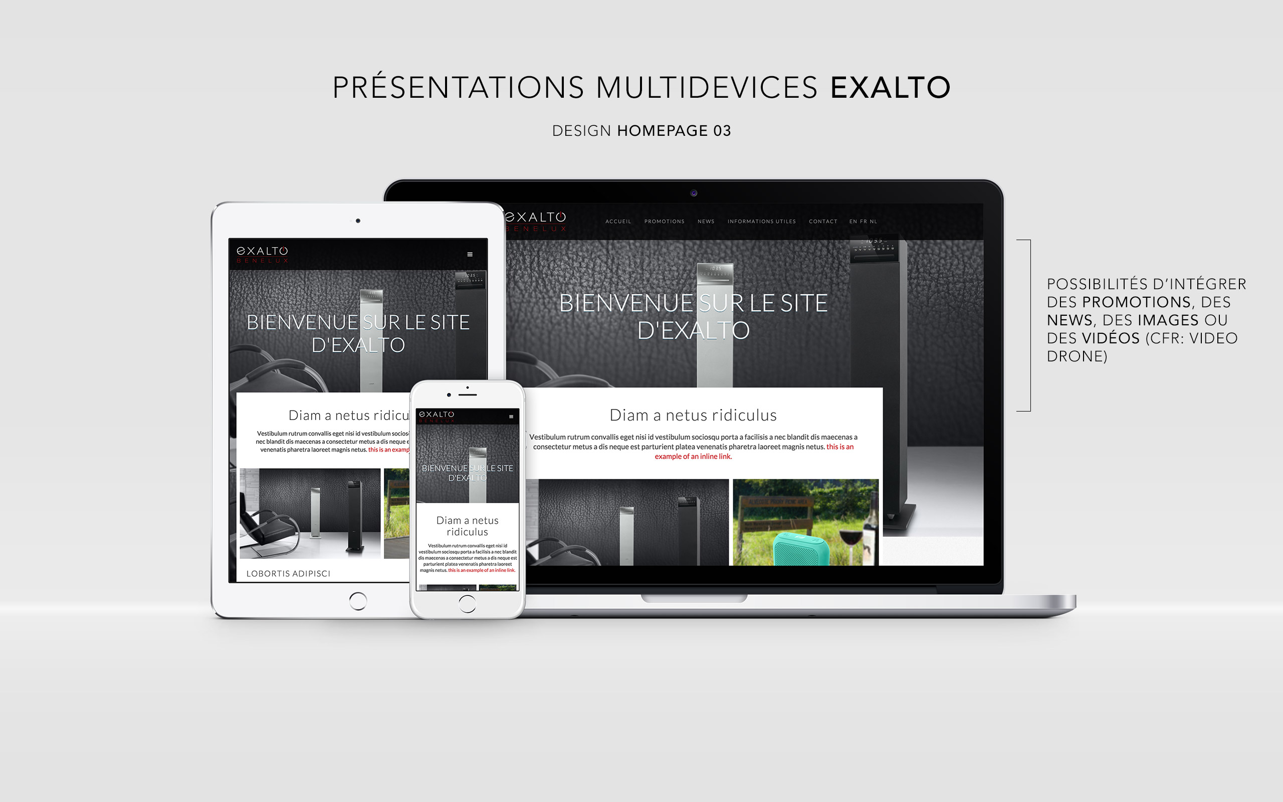 Exalto website