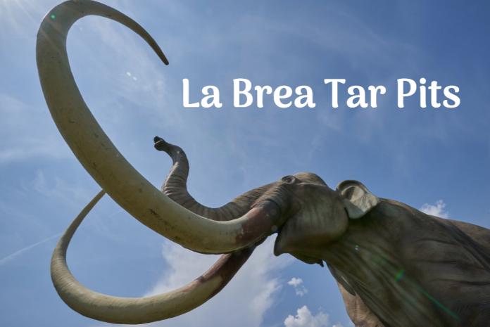 the la brea tar pits