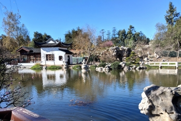 Huntington Library Botanical Garden