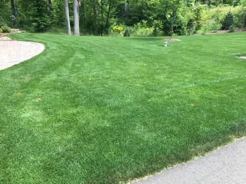 Lawn fertilizer brainerd lakes area