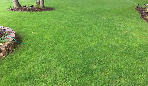 Lawncare for towhhomes