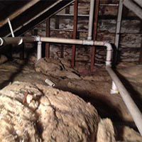 Attic Cleaning Services in Rhode Island: RI Rodent Dropping