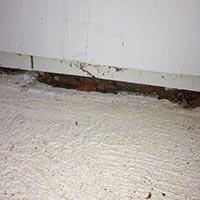 How Fix Mouse Holes