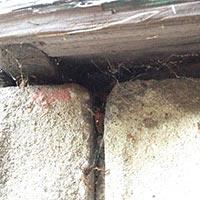 Foundation Hole Hidden in foundation