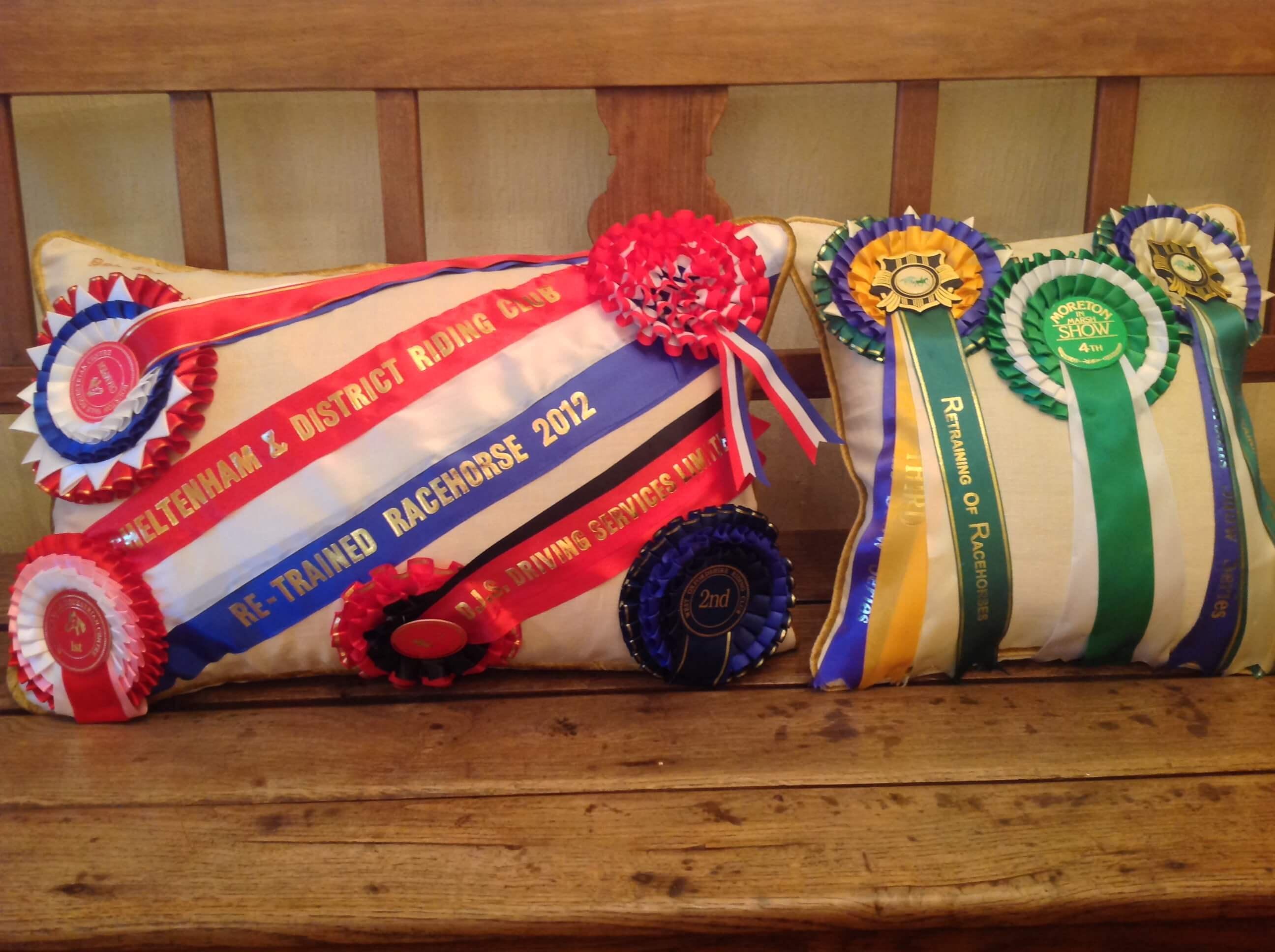 Winning Memories Rosette only cushion