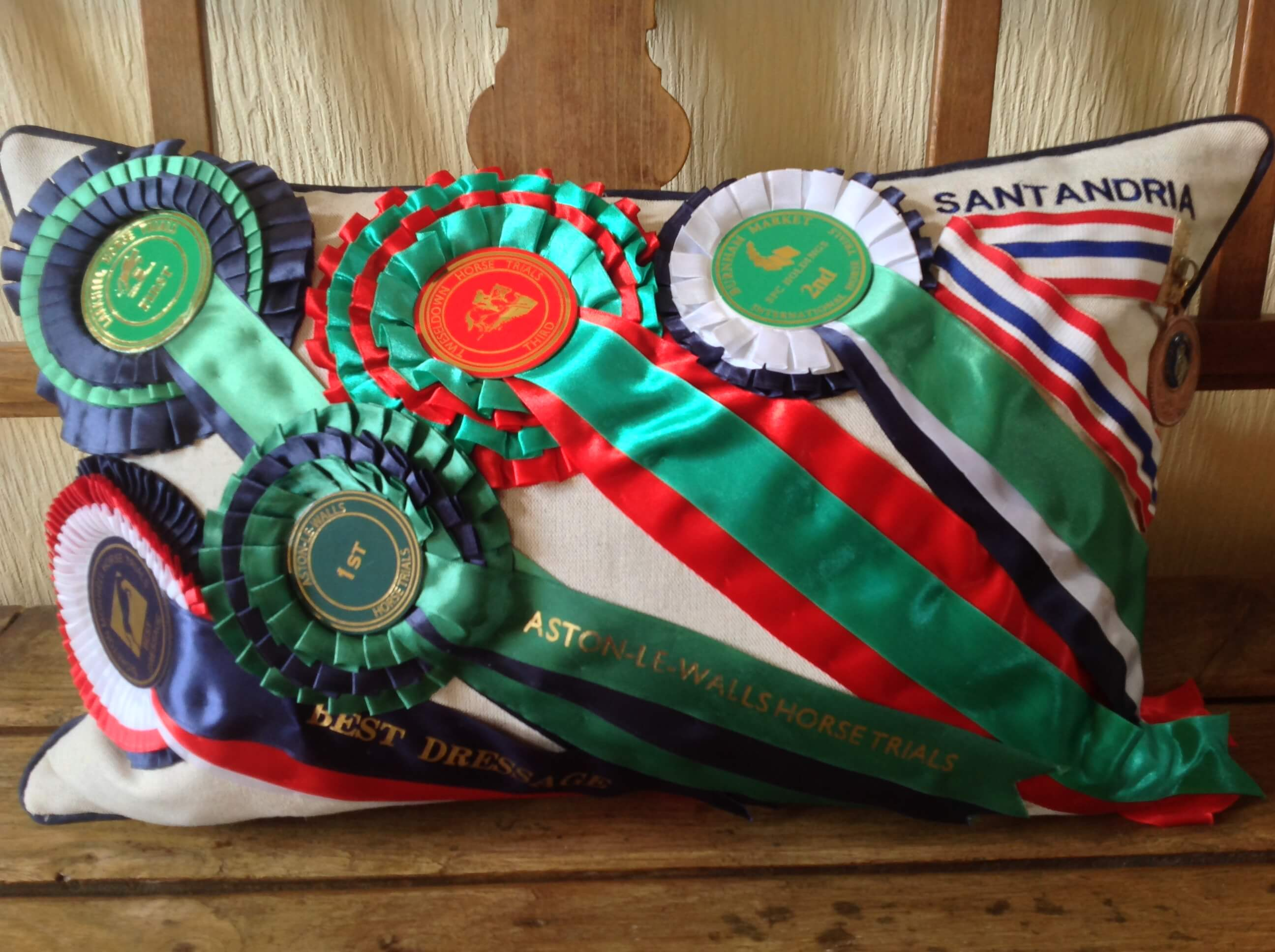 Winning Memories Rosettes & Embroidery