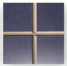 Windows Cleveland CD Beige